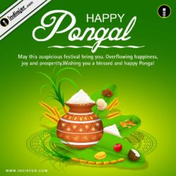 Pongal Festival Greetings Cards and wishes PSD Template