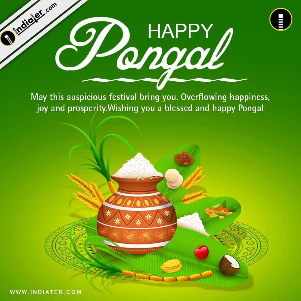 Indiater pongal festival greetings cards and wishes psd template pongal festival greetings cards and wishes psd template m4hsunfo
