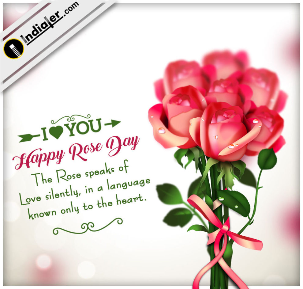 Free Rose Day Greeting Cards Psd Template Indiater