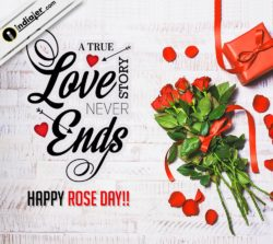 free-rose-day-wishes-greeting-cards-whatsapp-psd