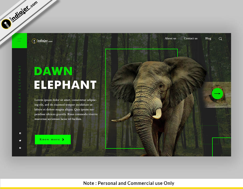 free-zoo-website-slider-banner-design-psd-template