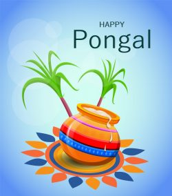 Happy Pongal Greetings Cards and wishes Images, Photos, Status and Messages