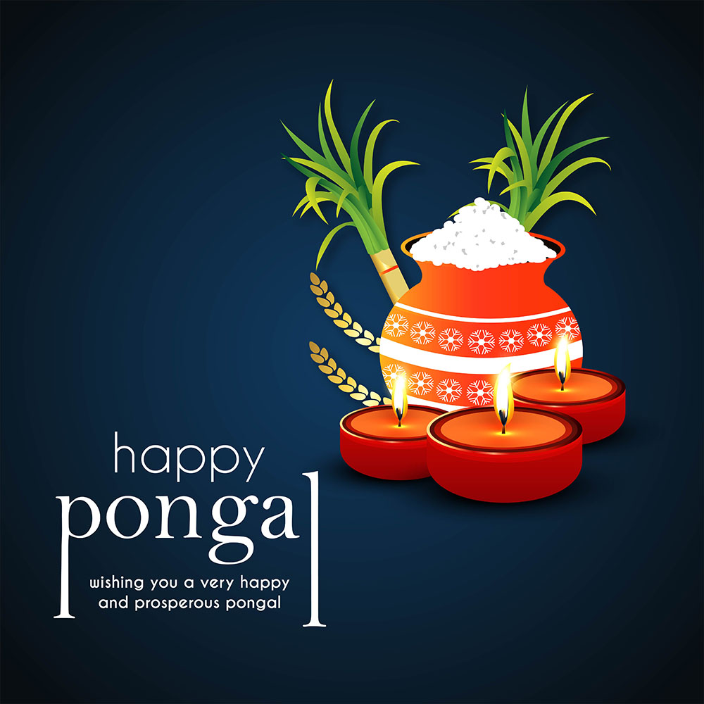 happy pongal wishes background free hd image
