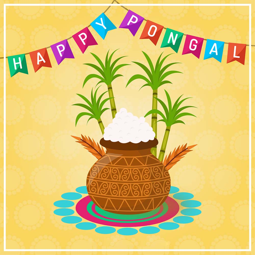 happy pongal wishes greetings card design image